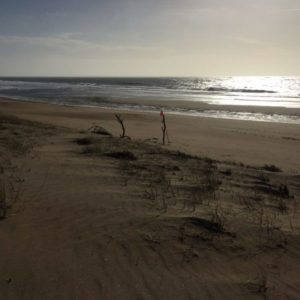 ocean, ana deman, plage, nature